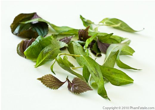 Rau Ram Leaves