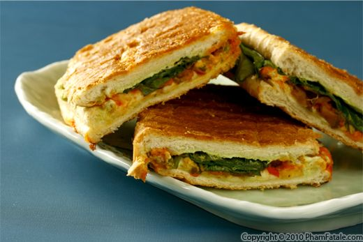 Grilled Panini Sandwich Recipe with Picture