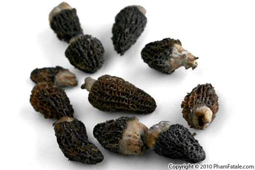 Fresh Morels