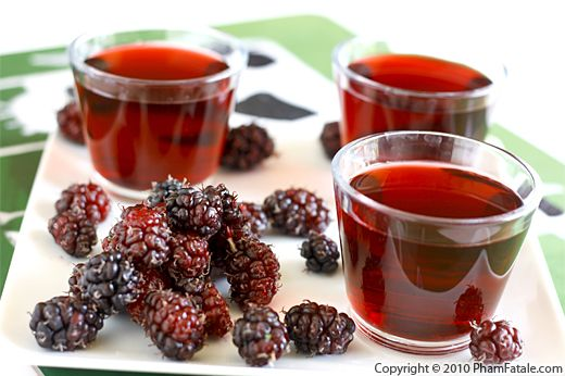 Mulberry Juice Recipe