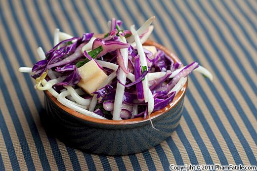 Red Cabbage and Bean Sprout Salad Recipe Recipe