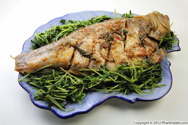 Baked Ocean Perch Recipe Recipe