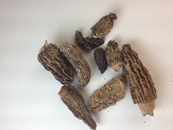 Dried Morel Mushrooms Recipe with Picture