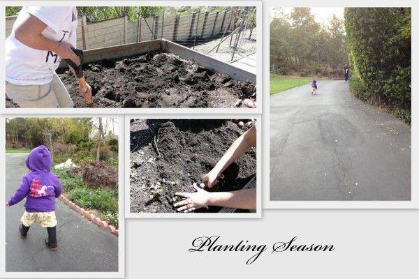 Planting Season Recipe