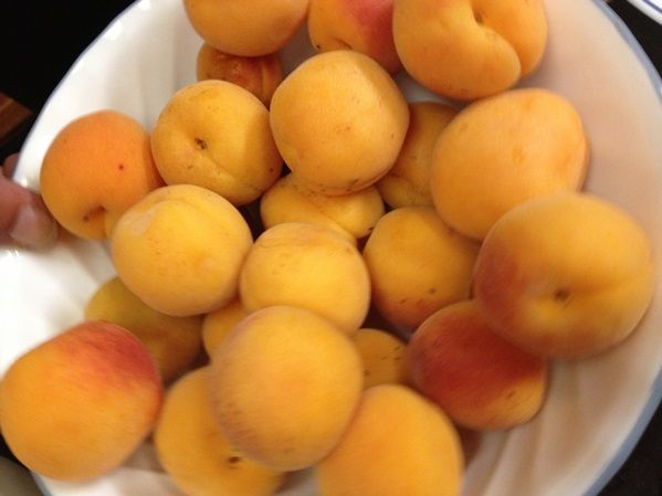 Apricot Dessert Recipe with Picture