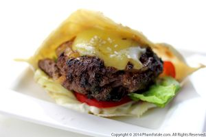 Bison Pita Burger Recipe