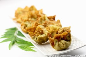 Indian-Inspired Vegetarian Wonton Appetizer Recipe