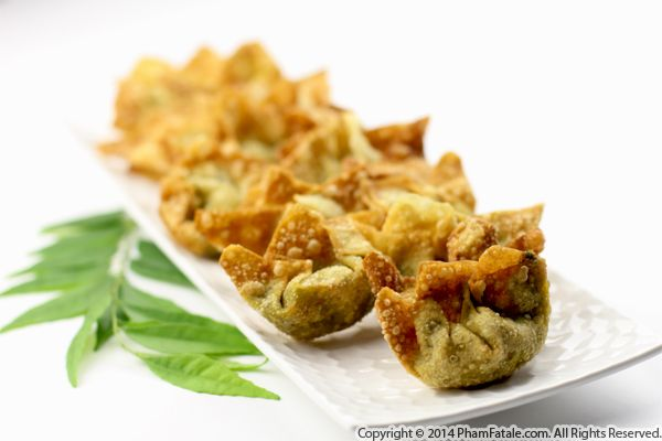 Indian-Inspired Vegetarian Wonton Appetizer Recipe Recipe